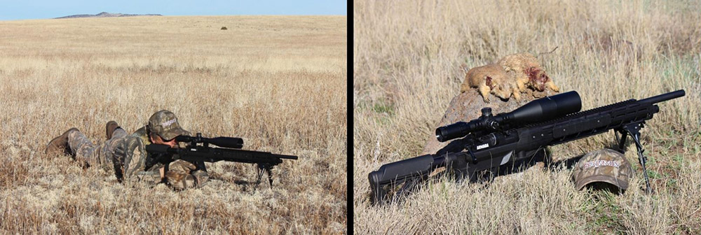Hunting With Airguns | The Blog of the 1800GunsAndAmmo Store