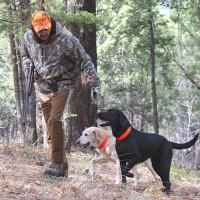 hunting-sidearms-thumb