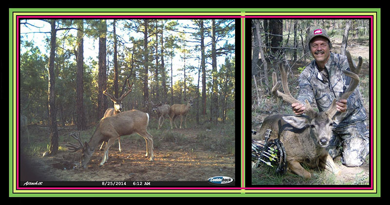 9_TC-TM-Cam-Kill_picsAZmuley