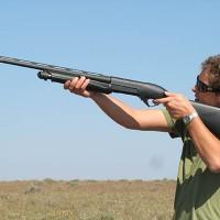 dove-shotguns-shells-thumb