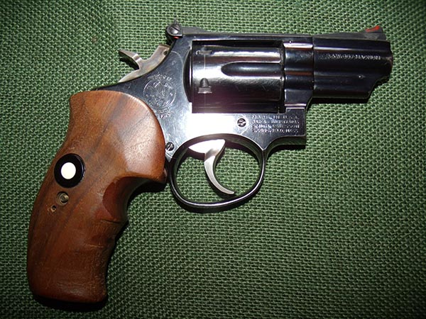 guns-federal-agent-3