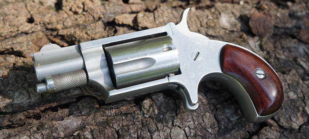 NAA  22 Revolver Review | The Blog of the 1800GunsAndAmmo Store