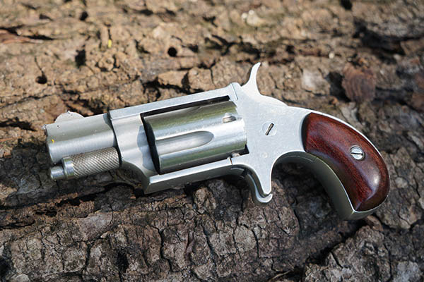 NAA .22 Revolver Review