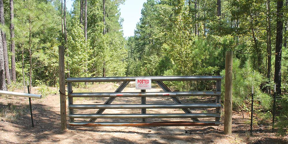 trespassing-2